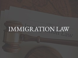 10 `IMMIGRATION-LAW2