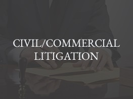 2 CIVIL_COMMERCIAL-LITIGATION2