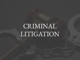 4 CRIMINAL-LITIGATION2