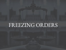 8 FREEZING-ORDERS2